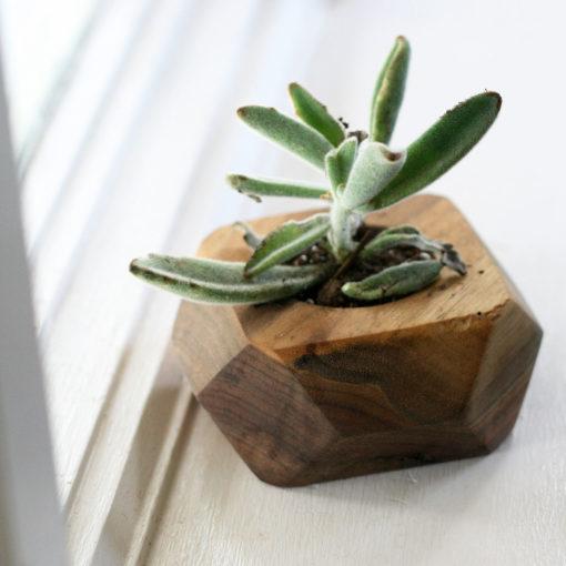 Geometric Block Planter - Succulent Planter - Wiley Concepts