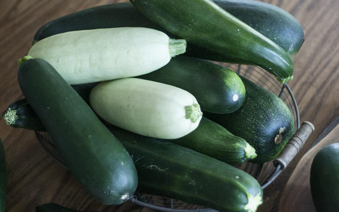 3 Ways To Preserve Zucchini